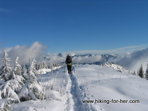 Snowshoer and tracks with snowy mountain in the distance