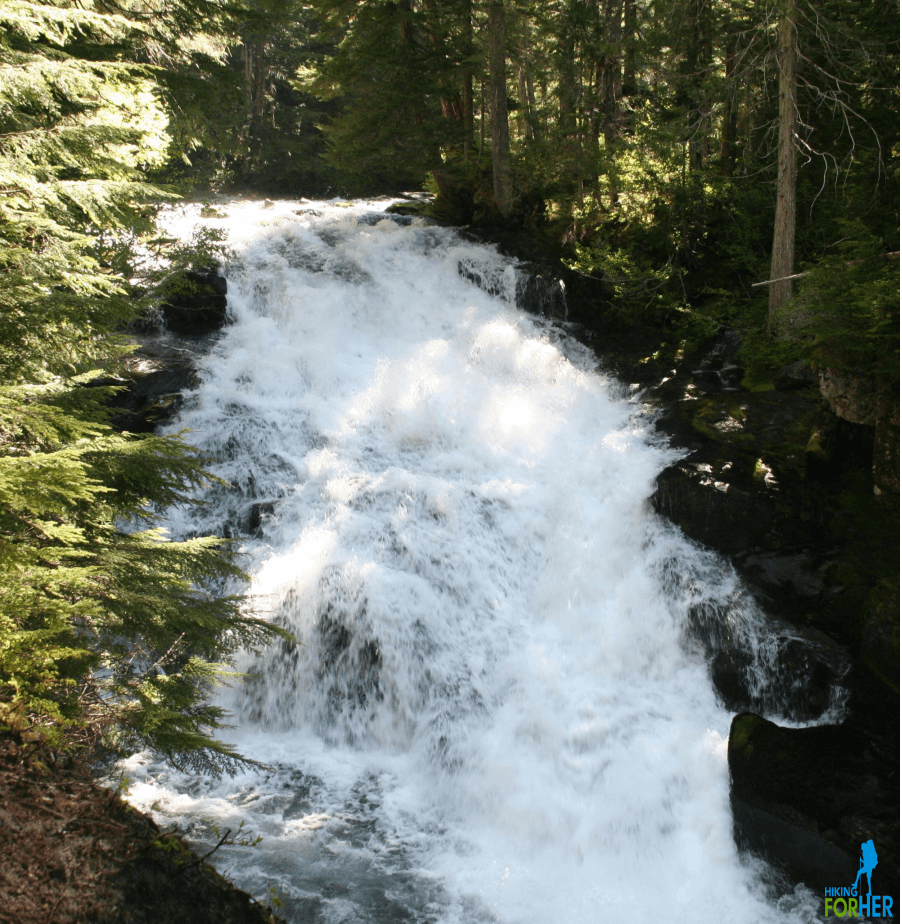 Carter Falls on the Paradise River, Mount Rainier National Park