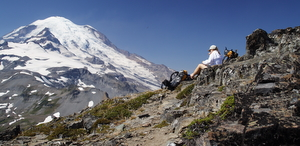 Female hiker in a white shirt gazing at Mt. Rainier
