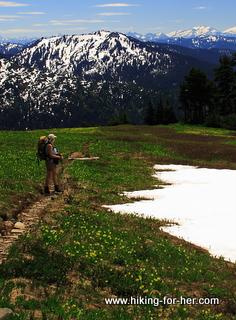 Female hiker in flower meadow on trail