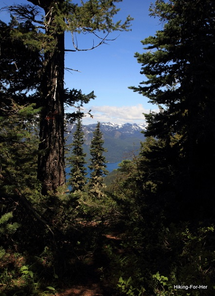 A break in the forest canopy, showing snow covered peaks and a blue lake in the distance