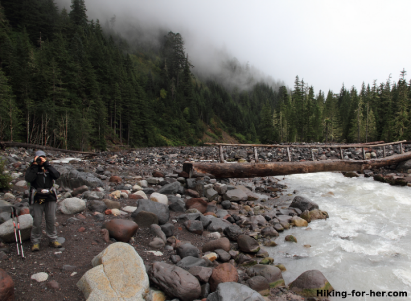 Hiker standing beside log bridge across the Nisqually River, Mt. Rainier National Park