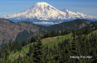 Mount Rainier viewed from Mount Adams, a lush green mountain meadow in the foreground