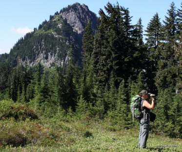 Female hiker wearing a green backpack taking photos in a mountain meadow