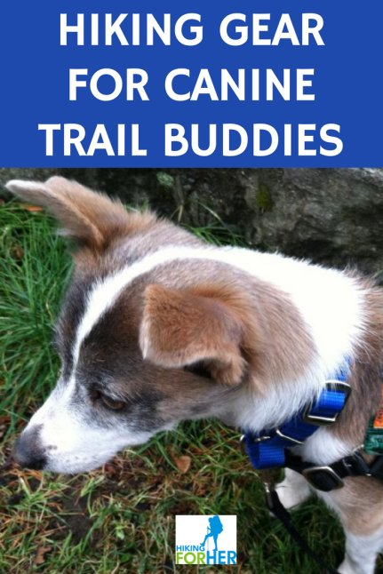 Do you hike with your canine companion(s)? Choose the best hiking gear for your hiking dogs with these Hiking For Her tips. #hiking #hikingdog #backpacking #doghikinggear
