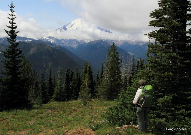 Female hiker wearing green backpack gazing at snow covered mountain