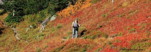 Woman hiking through colorful autumn foliage on a mountain trail