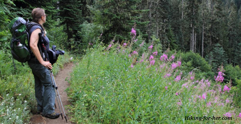 Female hiker wearing a backpack and leaning on hiking poles with purple wildflowers lining the trail
