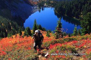 Female hiker standing on steep slope above bright blue alpine lake, surrounded by orange and yellow alpine blueberry bushes
