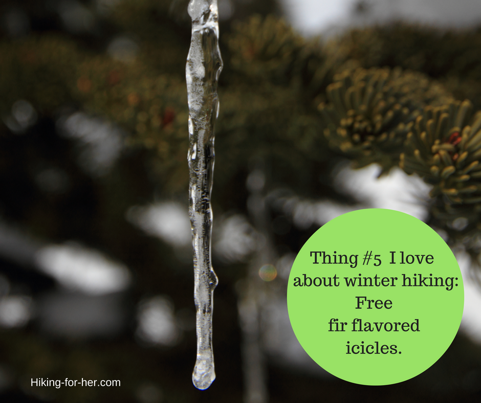 Yummy tree icicles! Just one of the reasons for taking a winter hike.