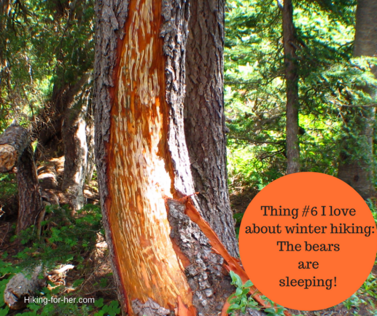Winter hiking safety tip: Don't wake up the bears! Lots more tips for a winter hike at Hiking For Her.