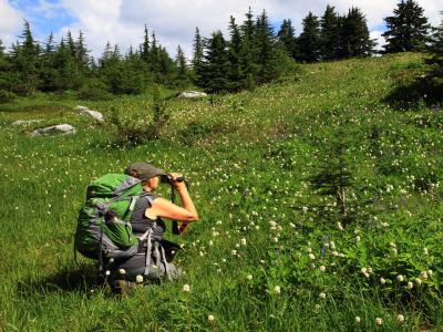Female hiker kneeling to take photos of wildflowers and wearing a green backpack