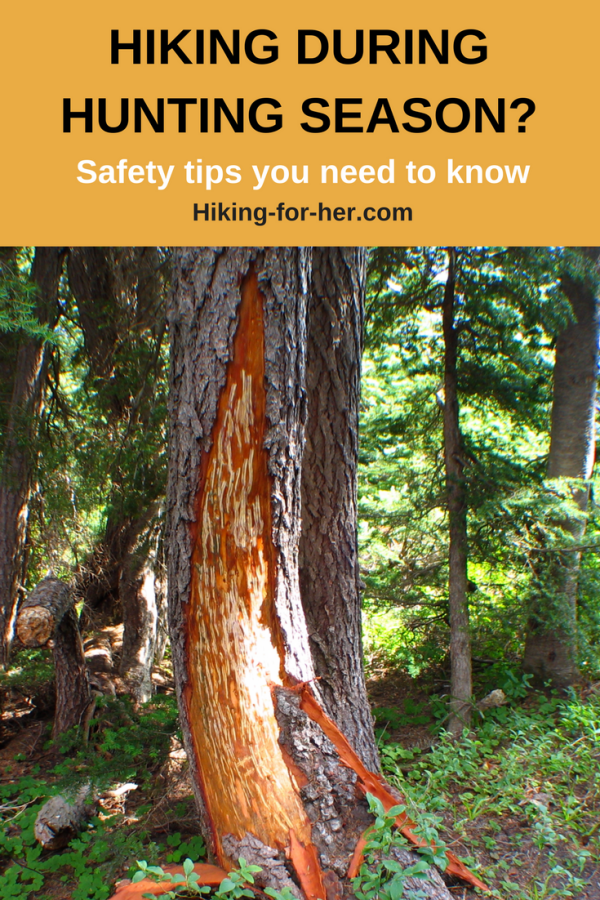Do you hike during hunting season? Use these safety tips from Hiking For Her to keep yourself safe on trails used by hunters, bears and you! #hike #backpacking #hikeduringhuntingseason #outdoorsafety