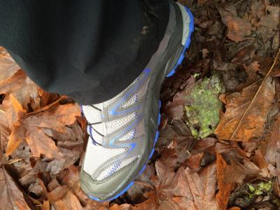 Hiking shoe on autumn leaves