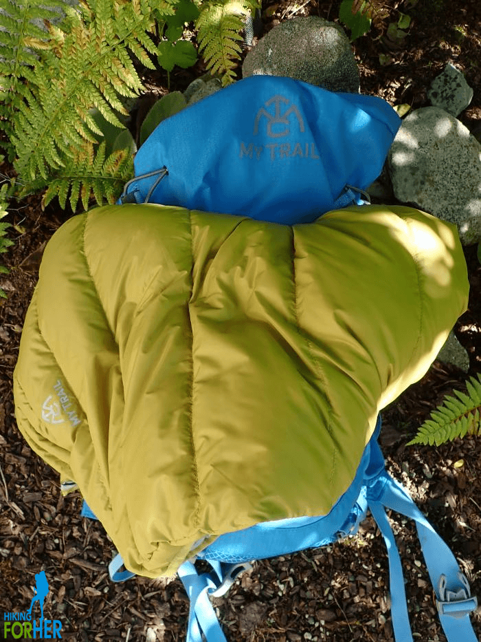 Blue backpack and yellow hiking vest sitting on the ground near fern fronds