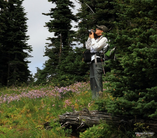 Female hiker wearing a long sleeve white shirt and green hiking pants, holding a video camera up to her eyes surrounded by purple flowers in an alpine meadow