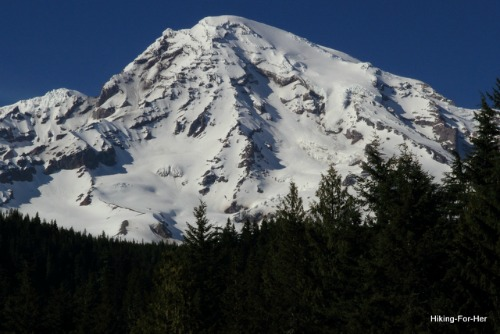 Majestic Mount Rainier's snow covered flanks