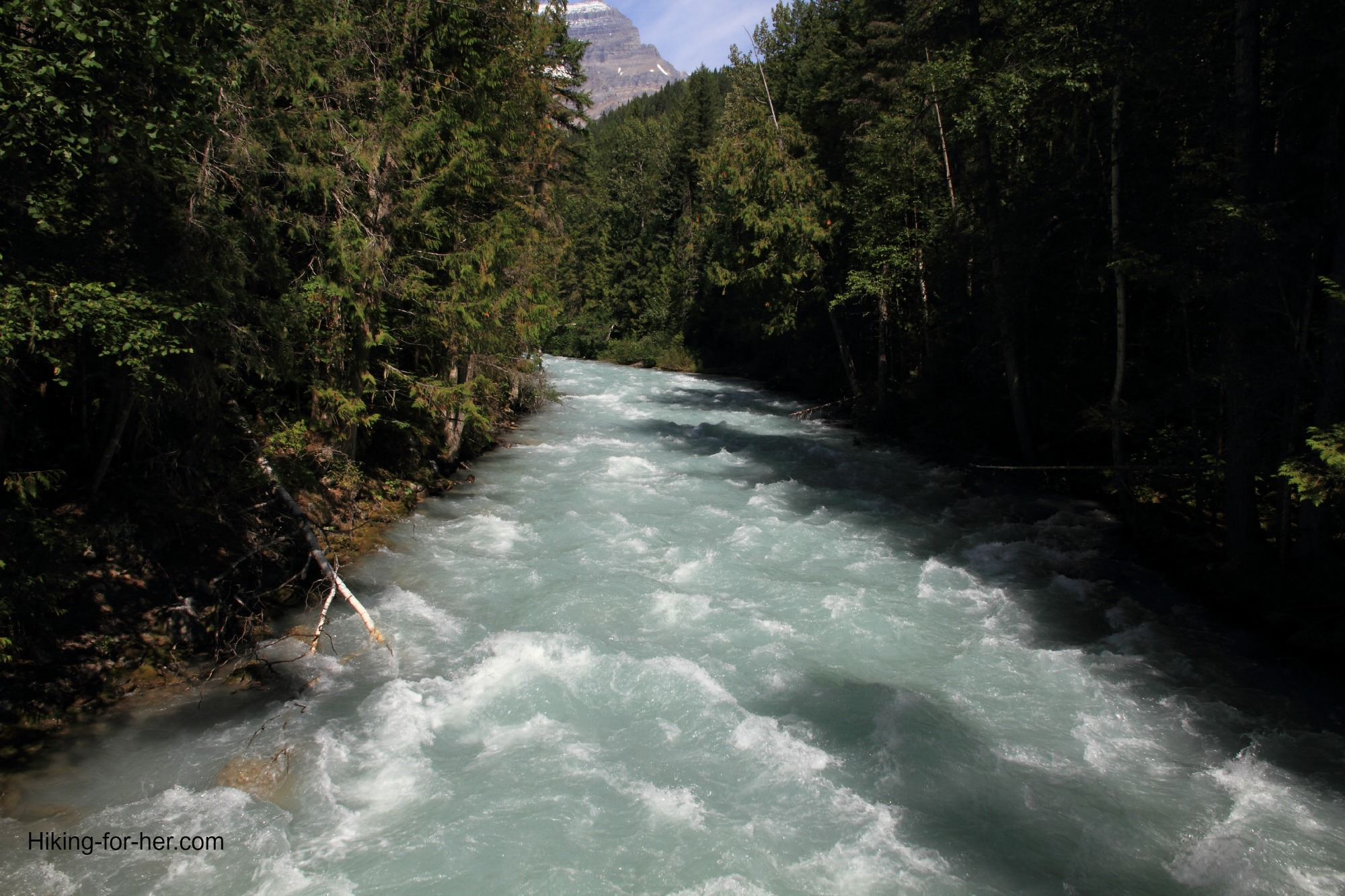 White water on the Robson River, B.C.