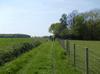 Fields of Kent