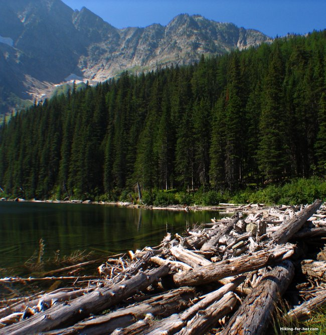Alpine lake with log detritus at outlet on a sunny day in the mountains