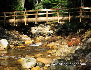 Gorgeous rocky mountain stream with a bridge