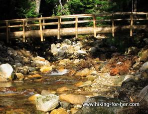 Gorgeous rocky mountain stream with a bridge