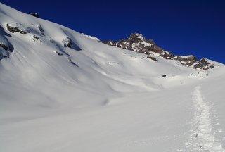 Snowshoe tracks near Mt. Rainier