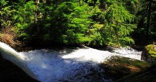 Rushing water in a mountain stream