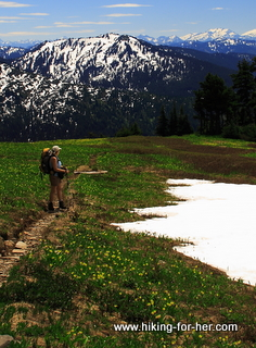 Female hiker in flower meadow on trail