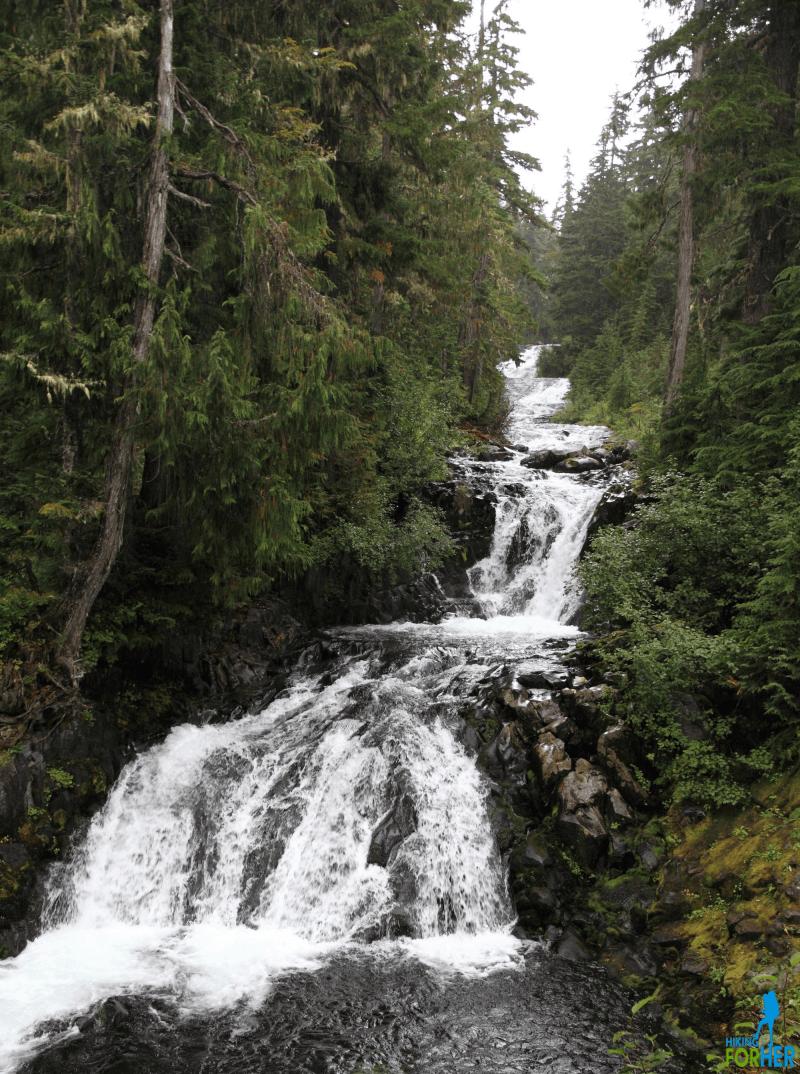 Paradise River cascading downhill in Mount Rainier National Park