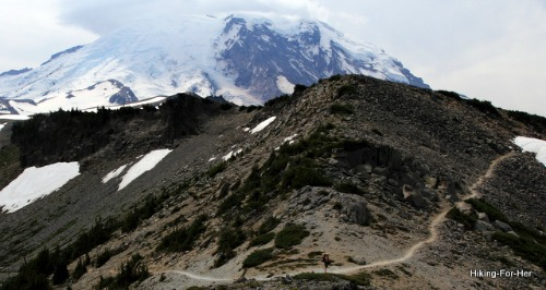 A hiking trail over mountain terrain with snow capped Mt. Rainier in background